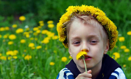boy in a wreath of dandelions in a blooming meadow and bright red butterfly. summer concept. copy space