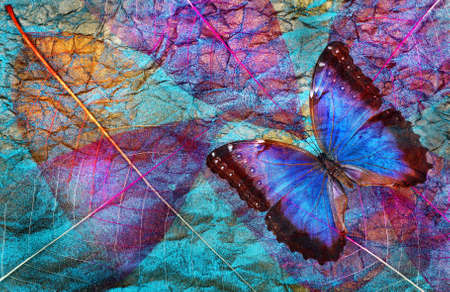 Abstract natural blue background. Morpho blue butterflies and transparent leaves texture background. Transparent purple leaves. Gold on the blue.
