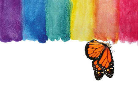 Colors of rainbow. Photo watercolor paper texture. Abstract watercolor background. Wet watercolor paper texture background. multicolored watercolor stains and colorful monarch butterfly. Фото со стока