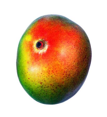 ripe mango fruit isolated on white Standard-Bild