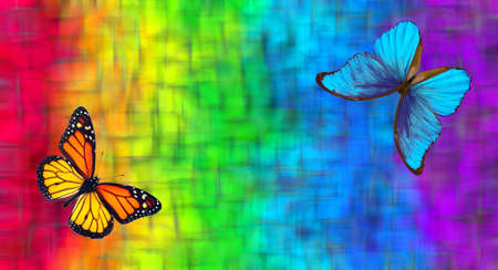 colors of rainbow. blue morpho butterfly and orange monarch butterfly on blurred colorful background
