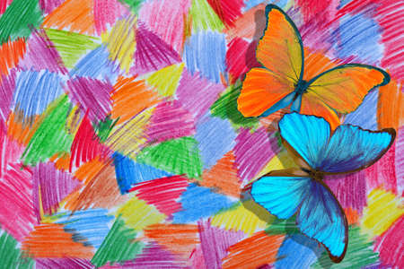 abstract drawing with colored pencils on paper. bright tropical morpho butterflies on a colorful background. Standard-Bild