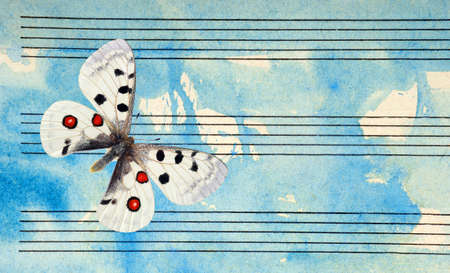 Bright apollo butterfly and notes. Butterfly melody. Photo of old music sheet in blue watercolor paint. Music concept. Abstract blue watercolor background. copy spaces