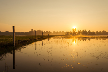 sunrise: Sunrise over the river
