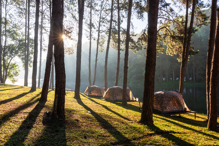 Pang Ung lake(translate from text in image), Muang Mae Hong Son Thailand is beautiful place and really nice atmosphere. Sunrise with pine trees river fog and cold in winter.