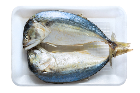 Two mackerel in foam through the steamed cooked isolated on white.