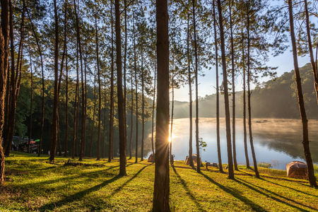 Pang Ung lake, Muang Mae Hong Son Thailand is beautiful place and really nice atmosphere. Sunrise with pine trees river fog and cold in winter.