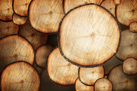 Wood log cut trunk background. Stump with wood rings Cross Section and Texture.