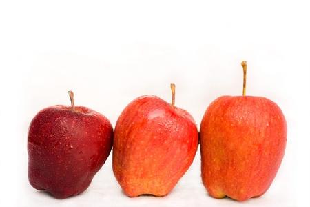 characteristics: Apple characteristics.