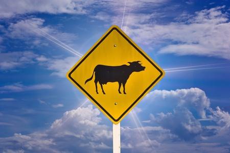 Warning signs of animals. photo