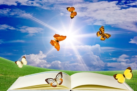 air animals: Butterfly Book. Stock Photo