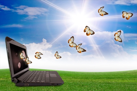 Butterfly computer. Stock Photo - 10997509
