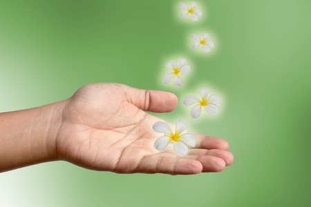 Hand and flowers. Stock Photo - 11254542