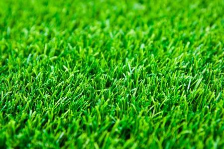 Artificial turf 免版税图像 - 14475045