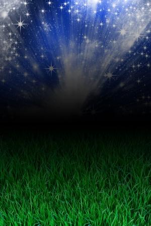 Gras Standard-Bild