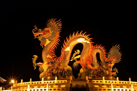 chinese new year dragon: Chinese style dragon statue. Night light.