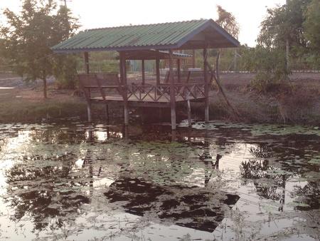 view: Thai pavillion