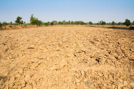furrow: Furrow soil of farm in thailand