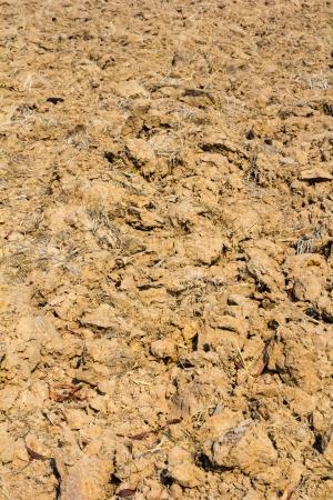 furrow: Close up furrow soil of farm in thailand Stock Photo