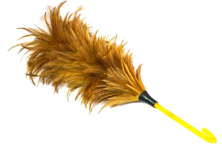 Feather duster isolated on white brackground Stock Photo