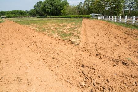 tillage: Tillage fields and no tillage fields
