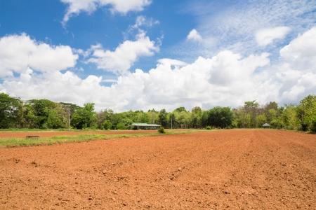 tillage: Tillage farm and blue sky
