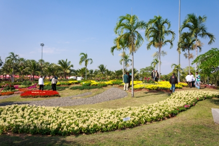 KHON KAEN,THAILAND - DECEMBER 19: View of  people walk to tour around the AMAZING FLOWER FESTIVAL 2013 on December 19,2013 in Thung Sang Lake, Khon Kaen