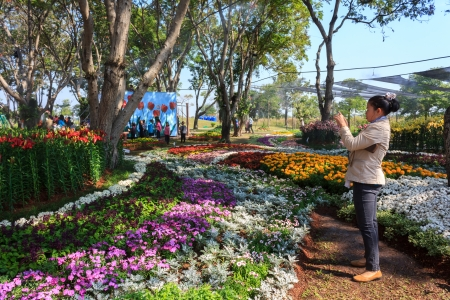 KHON KAEN,THAILAND - DECEMBER 20: View of people walk to tour around the AMAZING FLOWER FESTIVAL 2013 on December 19,2013 in Thung Sang Lake, Khon Kaen