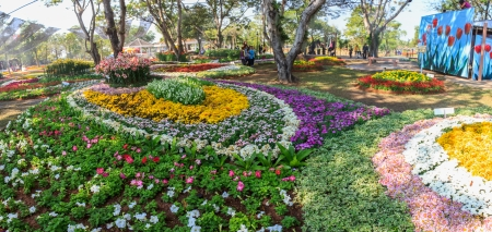 KHON KAEN,THAILAND - DECEMBER 20: Panorama of around the AMAZING FLOWER FESTIVAL 2013 on December 19,2013 in Thung Sang Lake, Khon Kaen