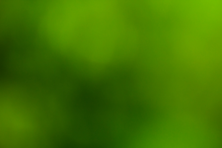 Green abstract bokeh background photo