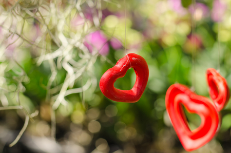 Red heart decorations hanging in nature flower garden with blank for copy space