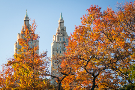 Colorful autumn leaves in Central Park, New York City. Stok Fotoğraf