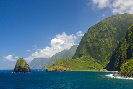 The world tallest sea cliffs of Molokai in a blue sky bright day light.