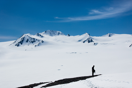 Silhouette hiker and the snowy white mountain on the background Stok Fotoğraf