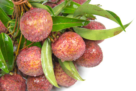 black seed: Lychee fresh is white and juicy with small black seed in side. its taste sweet and little bit sour.