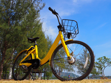 City bikes rent parking in Phuket Thailand Stock Photo