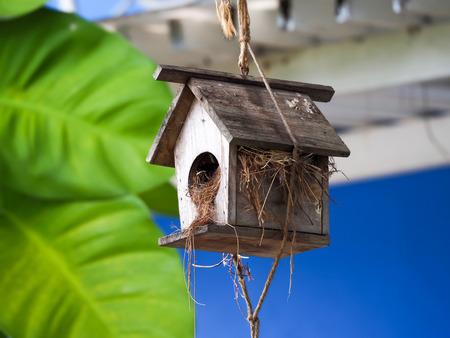 Bird Nest Box, Birdhouse Reklamní fotografie - 103037965