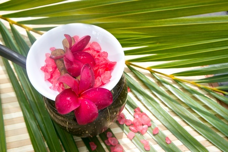 bowl of sea salt and red plumeria for spa treatment Stock Photo