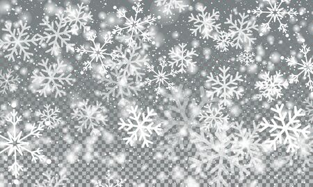 Snow Transparent Background. Vector Illustration. Snow Flakes. Realistic Falling Snowflakes. Winter Sky. Christmas Background. Falling Snow.