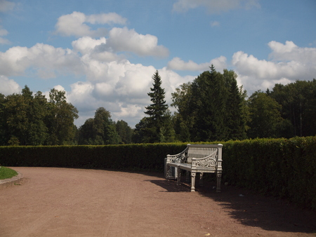 vintage white bench in the Park on the background of trimmed bushes, trees and cloudy sky