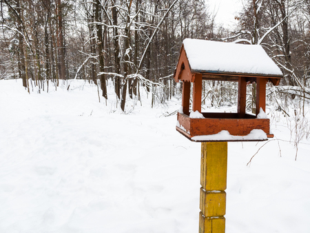 wooden bird feeder on pole in city park in winter day Фото со стока