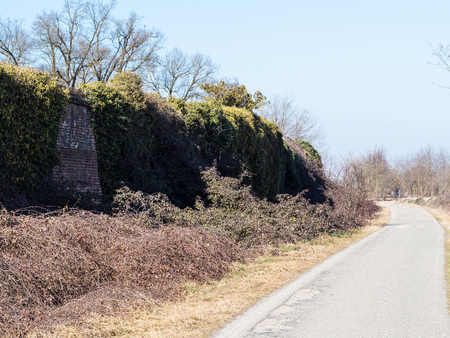 travel to Italy - pathway along overgrown ancient wall to medieval monastery in Certosa di Pavia, Lombardy