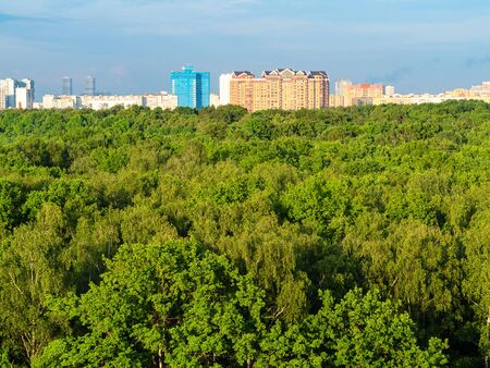 aerial view of large city park and residential houses on horizon in sunny summer evening Imagens - 124950502