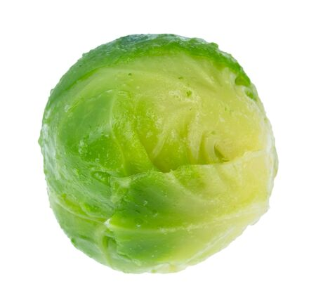 single wet ripe brussels sprout cutout on white background