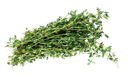 bundle of fresh thyme herb cutout on white background