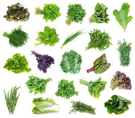 Ensemble de divers paquets de légumes verts du jardin découpés sur fond blanc