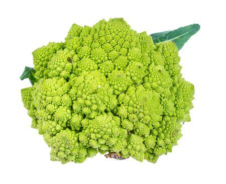 fresh romanesco broccoli cabbage cutout on white background
