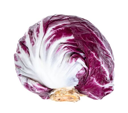 fresh head of Radicchio (Italian leaf chicory) cutout on white background