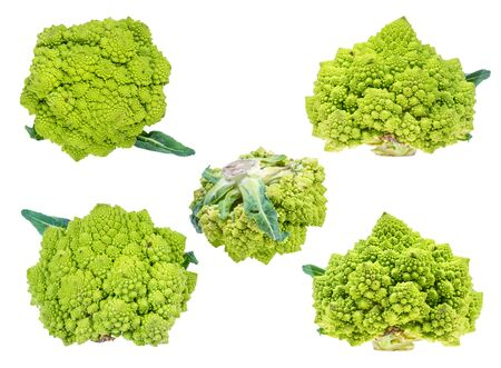 various fresh romanesco broccoli heads cut out on white background