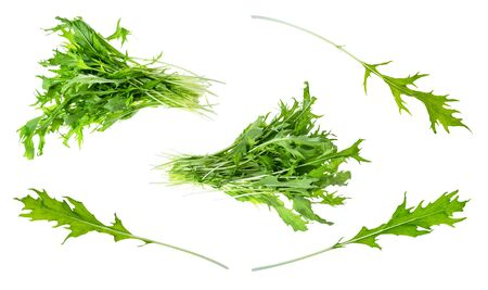 bundles, twigs and leaves of fresh mizuna plant cut out on white background